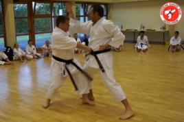 Bunkai der Kata Jion (Trainingsausschnitte) September 2014