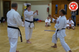 Bunkai der Kata Jitte (Trainingsausschnitte) September 2014